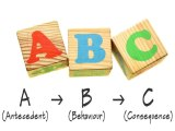 A B C's of Behavior…or Behaviour